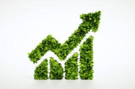Opslag duurzame energie treft woningbezitter