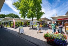 Sectie5 koopt supermarkten in Leeuwarden en Dommelen
