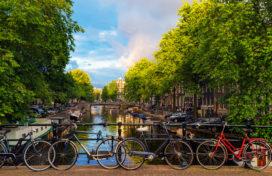 'Genoeg ruimte voor meer groen in Amsterdam'