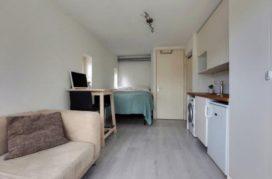 Tulpenmanie in hoofdstad: wonen voor 143 euro per m2